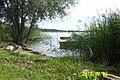 Jezioro Miedwie - panoramio (1).jpg
