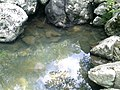 Jilotepec de Abasolo, State of Mexico, Mexico - panoramio (1).jpg
