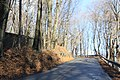 Johnstown late November - panoramio (15).jpg