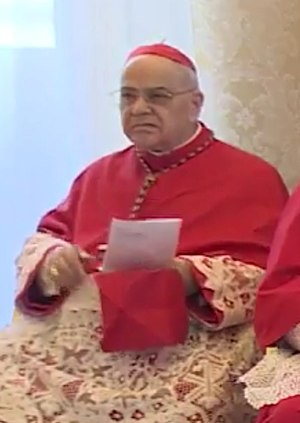 José Saraiva Martins - Cardinal Saraiva Martins on 20 April 2017.