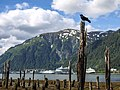 Juneau Cruise Ship 17.jpg