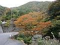 Kamiishizucho Tokiyama, Ogaki, Gifu Prefecture 503-1635, Japan - panoramio (10).jpg