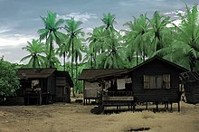 Two wooden houses on stilts stand in front of tall coconut trees.