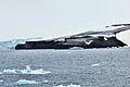 Kap Fligely 3 2012-08-10.jpg