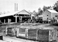Karri timber load in Primer of Forestry Poole 1922.png