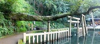Kashima Shrine - Mitarashi (御手洗池) reflecting pond, 2015