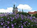 Katedra na Wawelu - widok ogólny.jpg