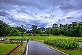 Kebun Raya Bogor 21.jpg