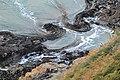 Kelp coils - panoramio.jpg