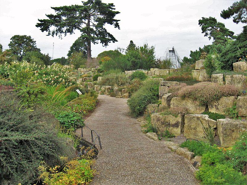 Kew Szikla