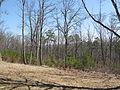 Kings Mountain National Military Park - South Carolina (8557795381) (2).jpg
