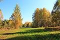 Krasnoobsk, Novosibirskaya oblast', Russia - panoramio (7).jpg