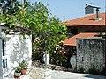Kreta-Krasi02.jpg