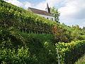 Kreuzkapelle met wijngaard.JPG