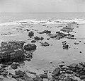 Kuststrook bij de haven van Caesarea Zuilen uit de romeinse tijd op het strand, Bestanddeelnr 255-1496.jpg