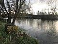 L'Yonne (rivière) à Vincelottes (Yonne, France).JPG