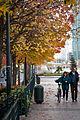 La Défense autumn walk.jpg