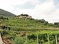 La vigna di Vincenzo - panoramio.jpg