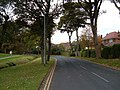Lady Edith's Drive, Scarborough - geograph.org.uk - 1547070.jpg