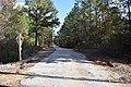 Lafayette County Road 244 Mississippi.jpg
