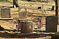 Lamington Black Cemetery, NJ - tombstones.jpg