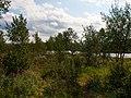 Lammaskoski, Könkämöeno - panoramio (2).jpg