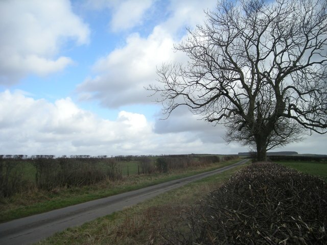 Lane near Rockhill - geograph.org.uk - 705623