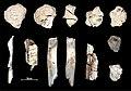 Lapa do Santo - Sepultamento 08 - Detalhe ossos queimados.jpg