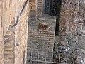 Largo di Torre Argentina (1351117076).jpg