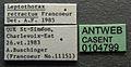 Leptothorax retractus casent0104799 label 1.jpg