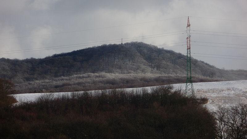 File:Lesná snehová prikrívka.JPG