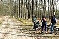 Leszno Osieczna trail.JPG