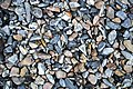 Lithic pebbles (Lake Champlain shoreline, near Lone Rock Point, Vermont, USA) 4.jpg