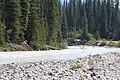 Little Yoho River IMG 4684.JPG