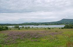 Llangorse Lake from the southwest.JPG