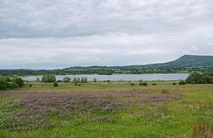 Llangorse Lake - The lake viewed from the southwest