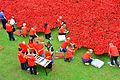 London Poppies At The Tower Of London 20-9-2014 (16925259141).jpg