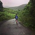 Lone walk.jpg