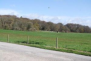 Lulworth Estate - Lulworth Park, surrounding Lulworth Castle.