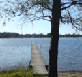 Lyngsjön.png