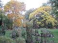 MSU 2014 Botanical Garden F.jpg