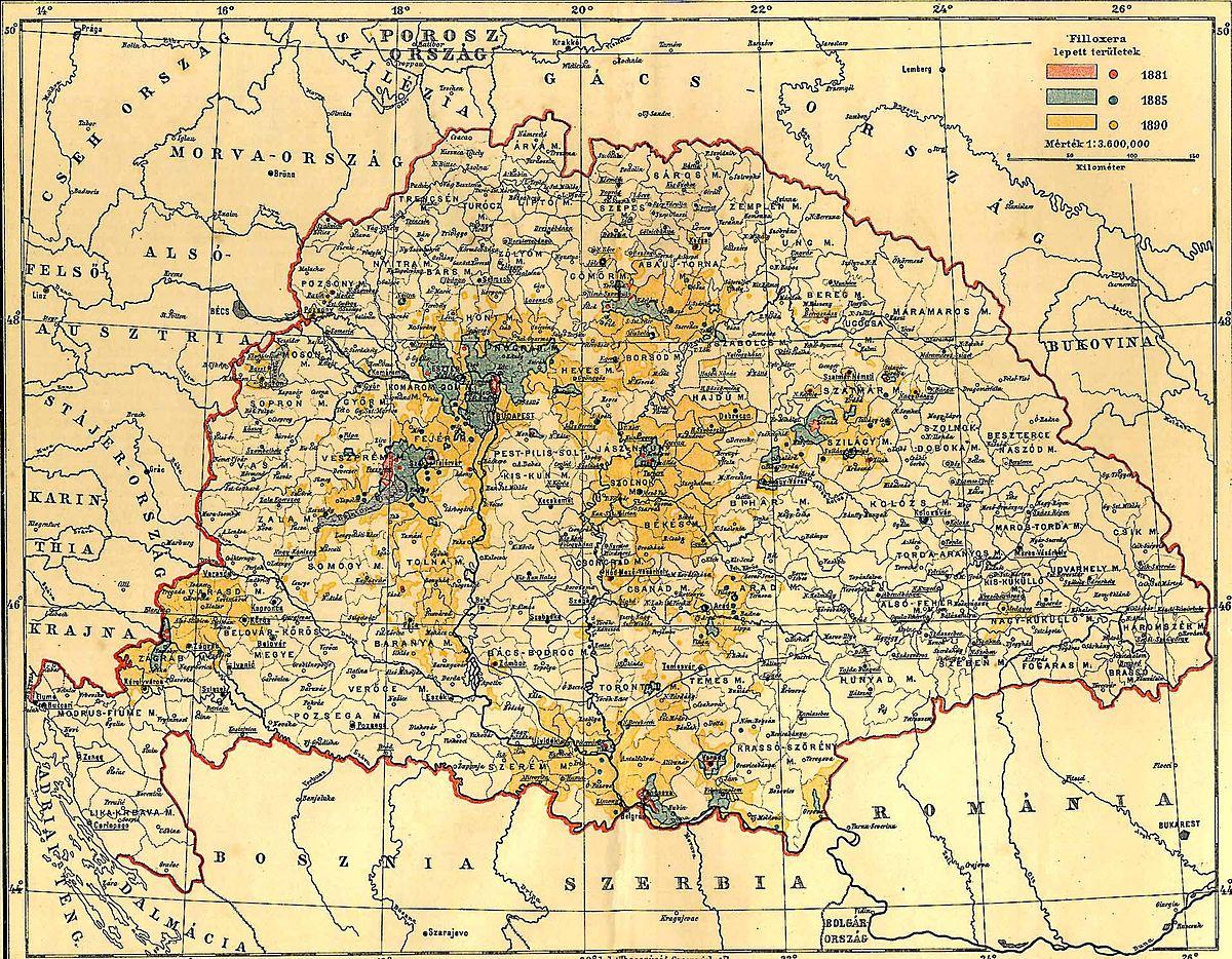 Fajl Magyarorszag Filoxera Terkep 1890 Jpg Wikipedia