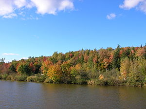 Mapleton Park, New Brunswick - Image: Mapletonpark moncton 3