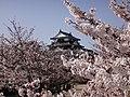 Marunouchi, Matsuyama, Ehime Prefecture 790-0008, Japan - panoramio (65).jpg