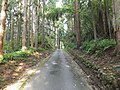 Matsukura, Tateyama, Nakaniikawa District, Toyama Prefecture 930-3237, Japan - panoramio (2).jpg