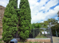 Mausoleo del Torrione Prenestino.PNG