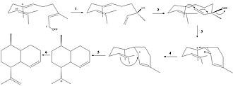 Amorpha-4,11-diene synthase - Figure 2: ADS Mechanism