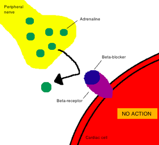 Mechanism of action biochemical interaction through which a drug produces its pharmacological effect