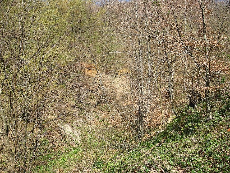 Medvednik - zapadna Srbija - selo Rebelj - okna starog rudnika bakra na Medvedniku 1