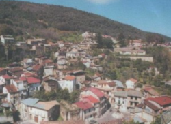 Melicuccà.png